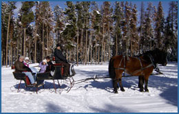 Private sleigh ride on a sunny day